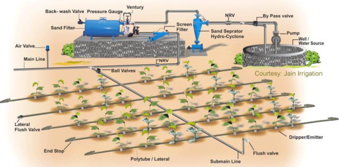 Hệ thống bơm trong lĩnh vực nông nghiệp