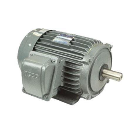 Động cơ điện mô tơ TECO AESV1S-0.75(TECO0.75) 3 pha