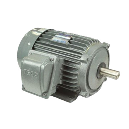 Động cơ điện mô tơ TECO AESV1S-1(TECO1) 3 pha