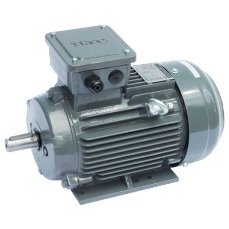 Động cơ điện motor TECO AESV1S-20(TECO20)