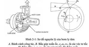 Cấu tạo và nguyên lý hoạt động của bơm ly tâm