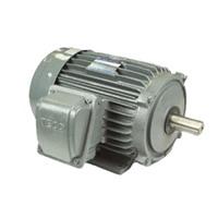 Động cơ điện mô tơ TECO AESV1S-1.5(TECO1.5) 3 pha